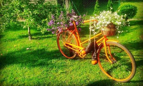 Sport to zdrowie! O jeździe na rowerze